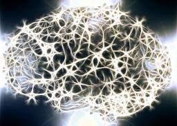Photos de neurones lors d'un examen pour la SEP